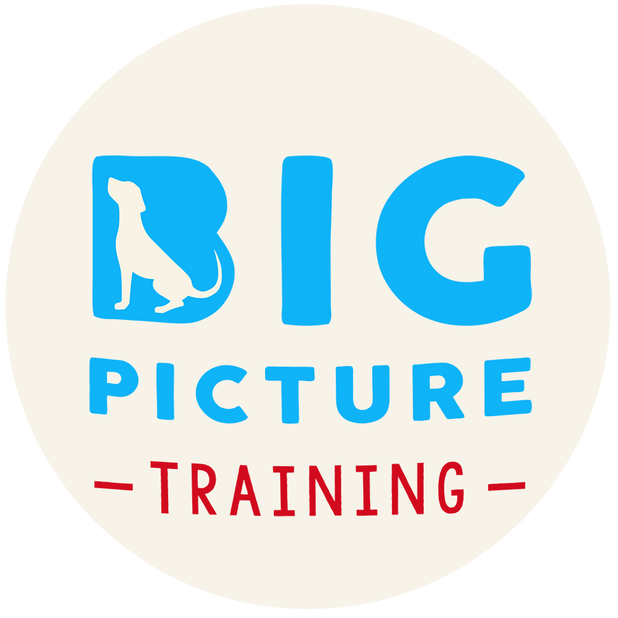 Big Picture Dog Training
