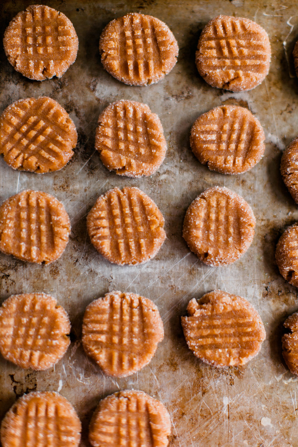 jennahazelphotography-3 ingredient PB Cookies-0047.jpg