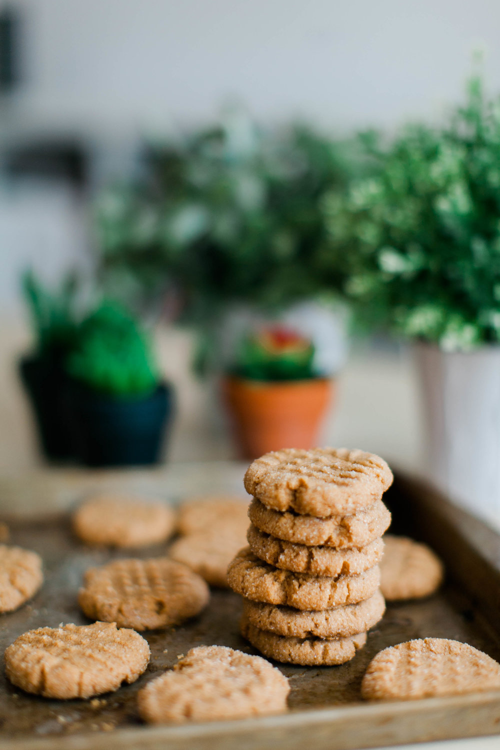 jennahazelphotography-3 ingredient PB Cookies-0058.jpg