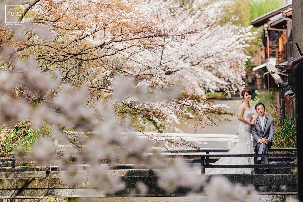 白川 京都櫻花 京都紅葉 Kyoto Overseas Pre-Wedding