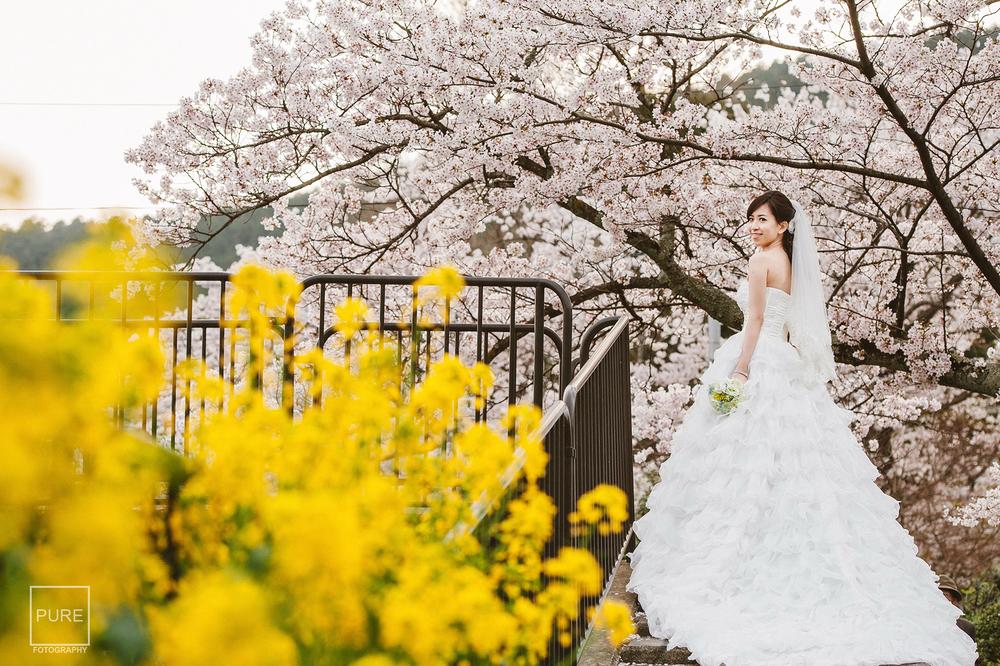 京都櫻花 京都婚紗拍攝 京都海外婚紗 海外婚紗拍攝 三科疏水