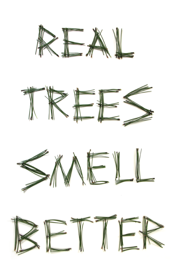 2011 Christmas card concept