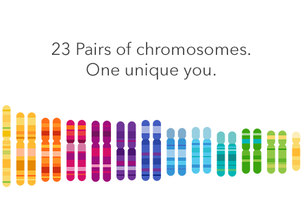 23AndMe-Genetic-Testing.png