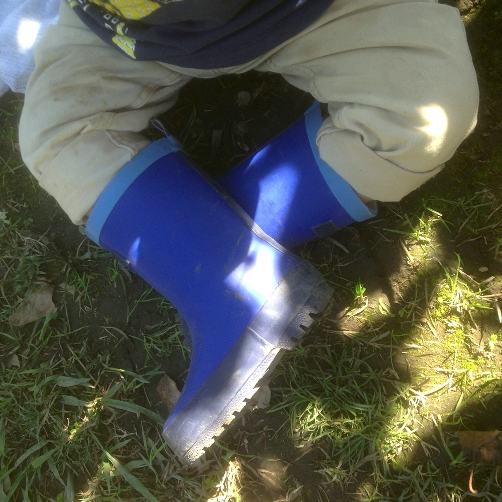 Gumboots at the apple orchard