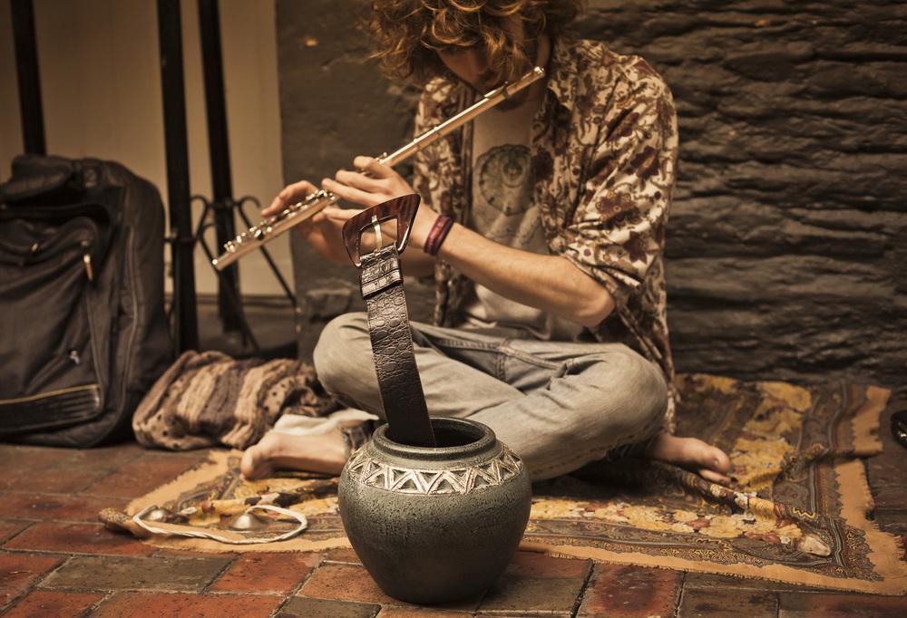 Snake Music