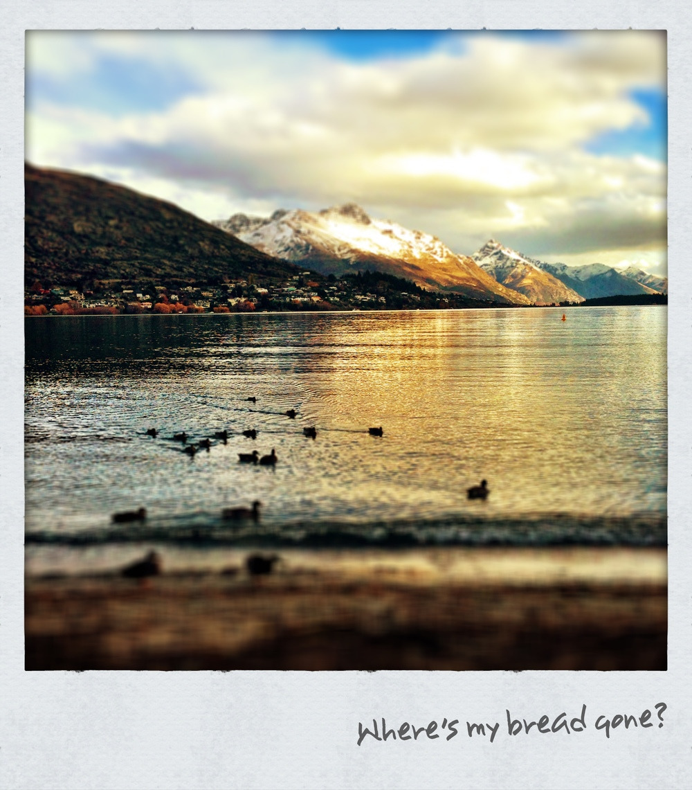 lake wakatipu on sunset