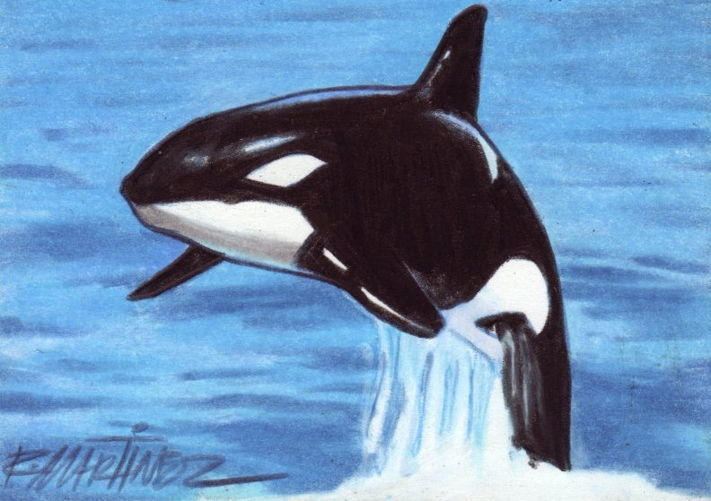 Martinez-orca.jpg
