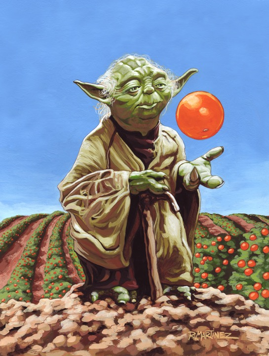 Yoda-Orange Grove72.jpg