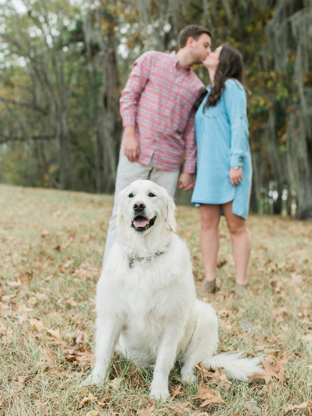 Couple take Engagement Pictures with their cute dog.