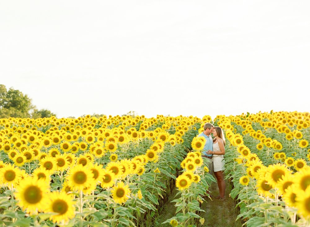 Jessie Barksdale - Sunflower Field Engagement Session