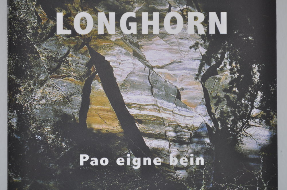 Coveret på den nye CDen til Longhorn. FOTO: Kristen Olav Grøttebø