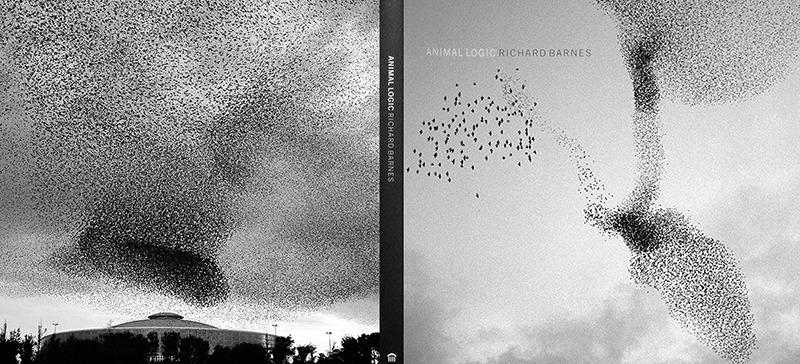 "Animal Logic-book jacker ""Murmur#1"" and ""Murmur#21"" , 2005 Archival digital ink jet print 40 x 40 inches"