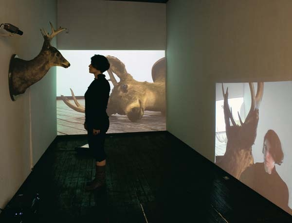 Dissonance , 2009 Installation view LMAK Projects