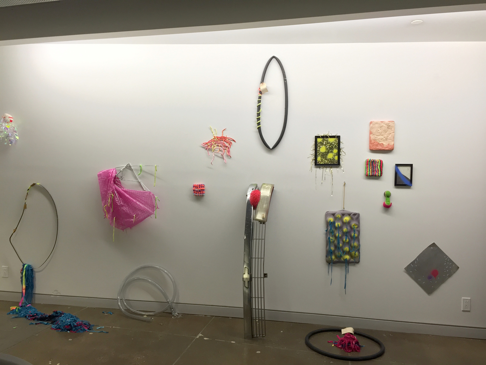 Denise Treizman Installation view 2015