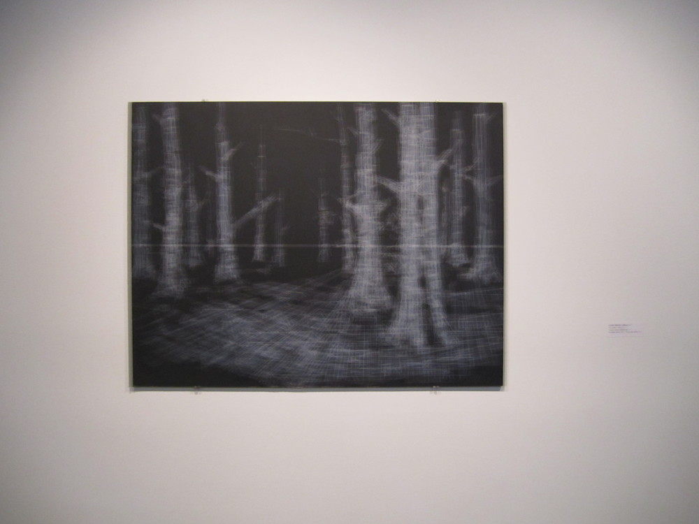 Hong Seon Jang Forest, 2011 Tape, Chalkboard 19x25 inches
