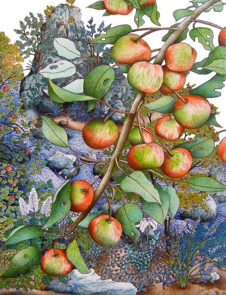 "Michael Eade Wild Apple Branch Egg tempera on wood panel 12.5"" x 9"" 2010"