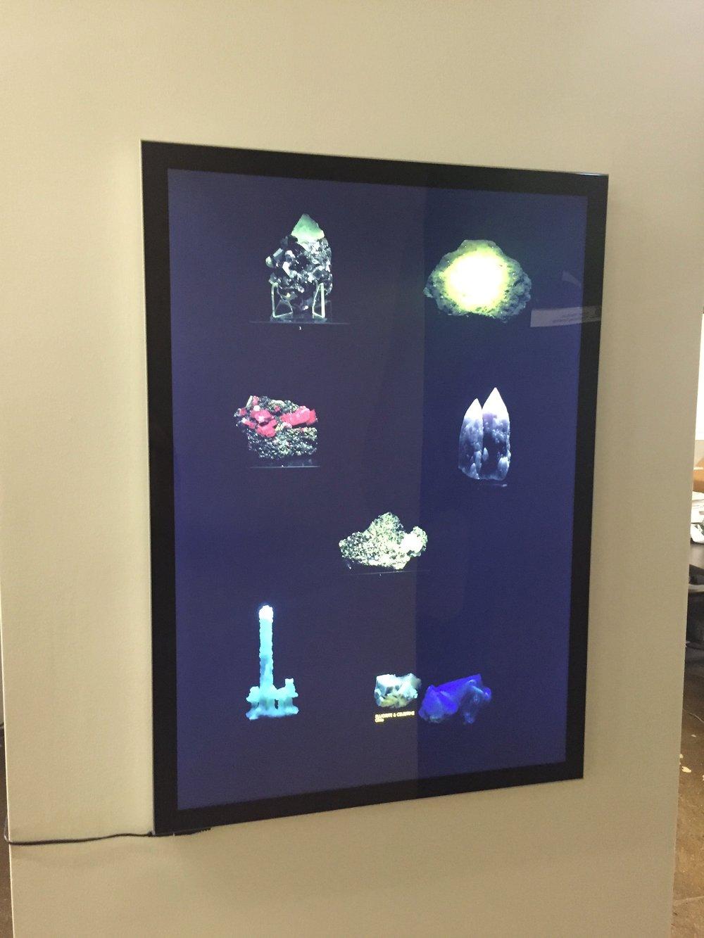"Dana Levy  Mineral Vitralis  2013 Duratran Print in Lightbox 19.75"" x 27.5"""