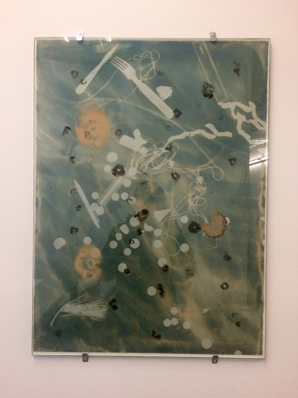 Essye Klempner  Sun Stains with Traces of Past Portraits, iv  Toned Cyanotype, Glass and Mushroom Spores
