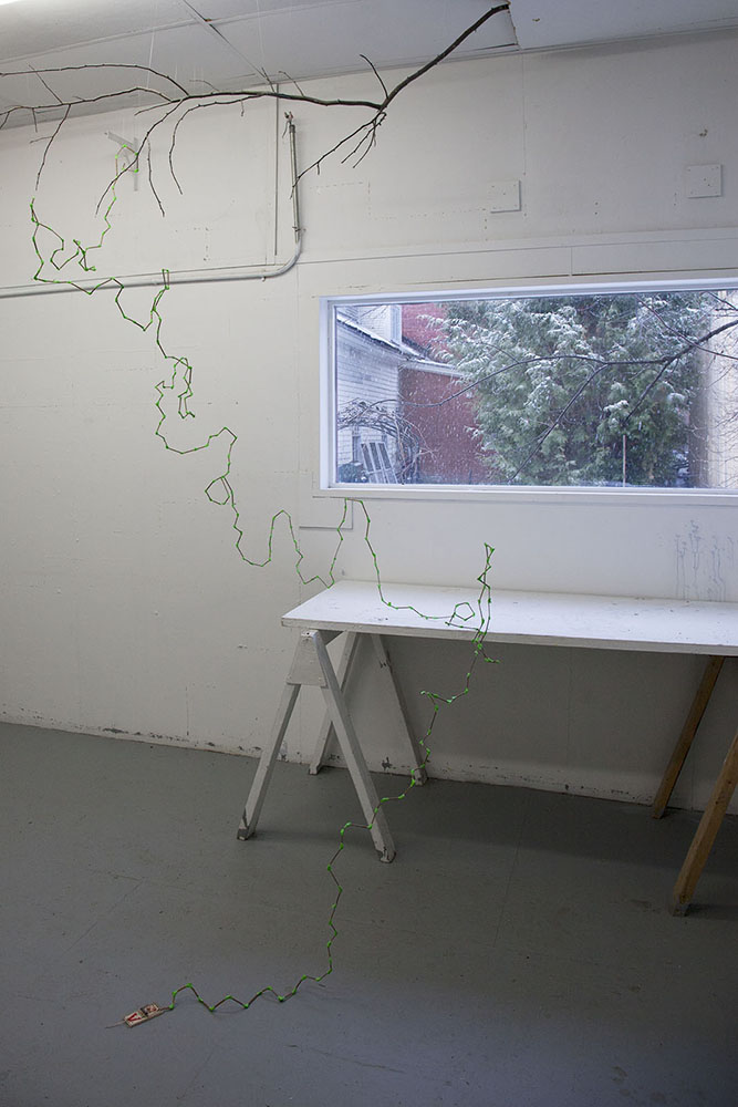 Untitled I  Mixed Media Installation (branch, stem, duct tape, monofilament line, mouse trap) Site-specific [size dimensions]