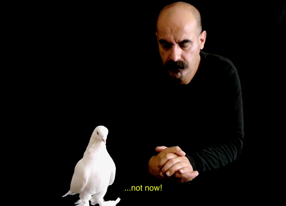 How To Tell Of Peace To A Living Dove , 2015 ideo, 4'32'' HDV-PAL, colour, sound Courtesy of the artist & Pilot Gallery (Istanbul, TR)