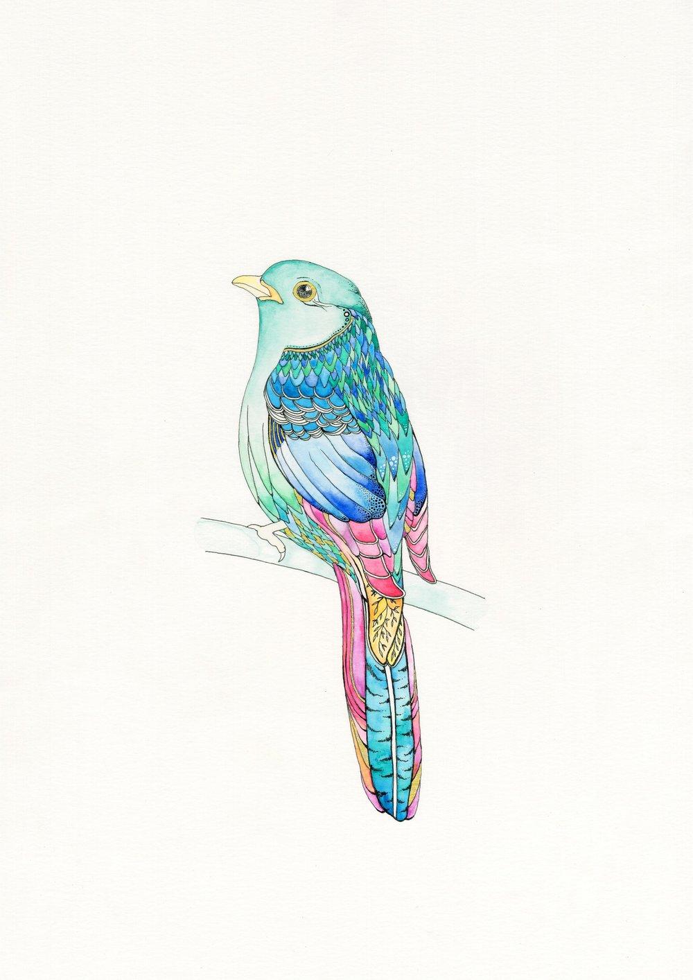 Llenya Bird