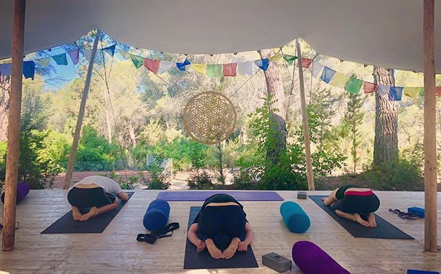 Peaceful easy feelings at @yogarosa.retreats ✌️
