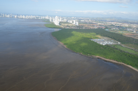 Panama Bay faces challenges balancing development and coastal protection of natural habitats.