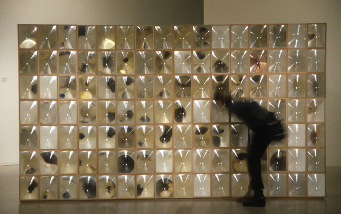 Esperanza Mayobre, Colirio (Eyedrop), Installation view, 2004
