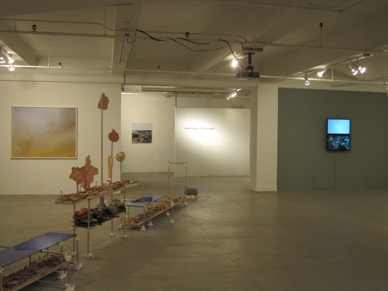 Installation view of Distant Images, Local Positions
