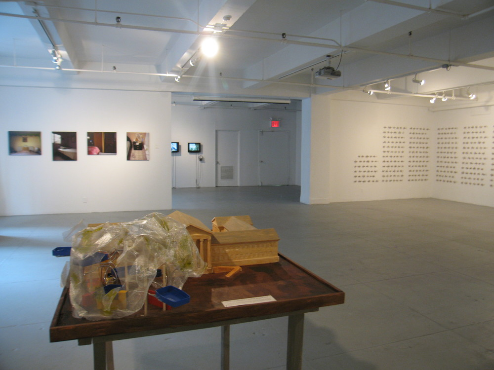 Installation view of Companion