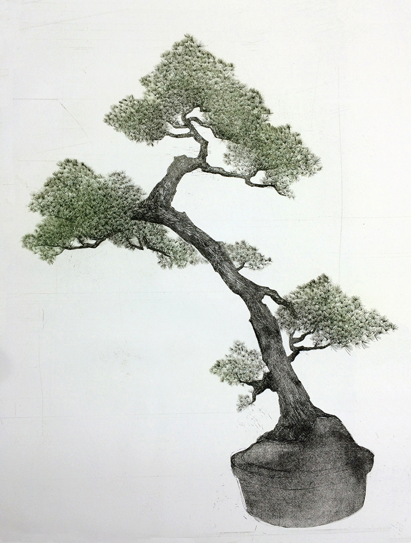 Yuchen Chang   Bonsai , 2015 Etching, aquatint, and drypoint on paper