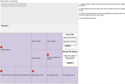 Rough sketch of registry landing screen elements.