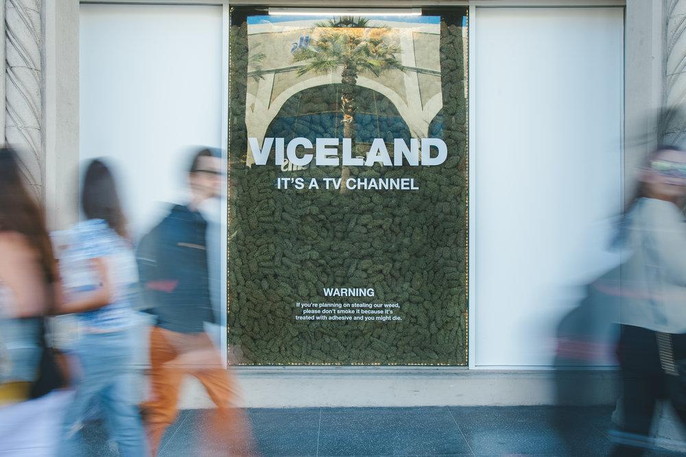 VICELAND_WEEDWEEK_LA_3189.jpg