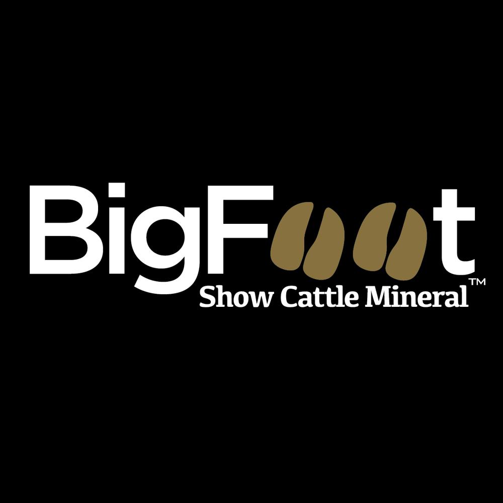 BFlogoblock-01.png