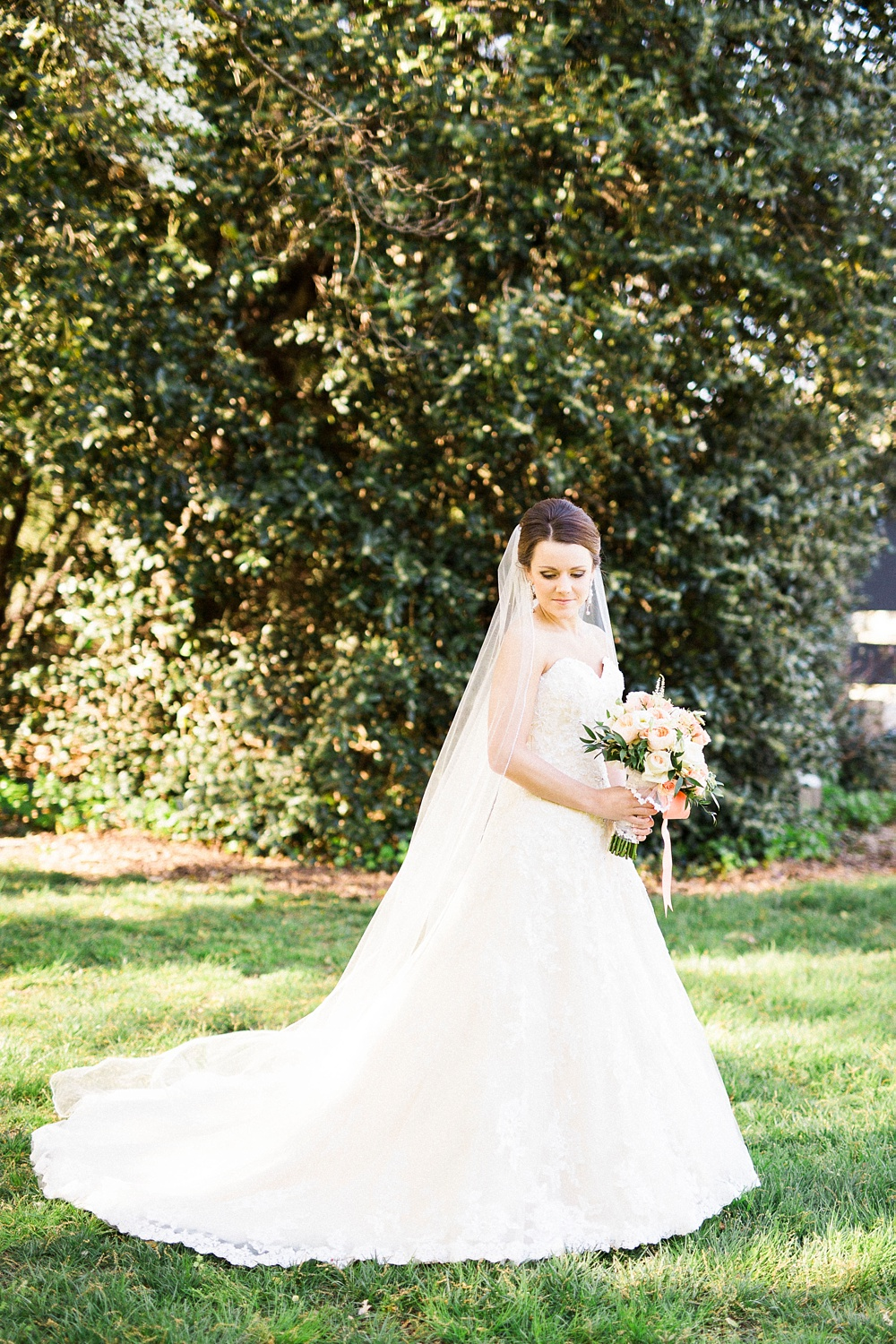 Rachael Bowman Photography-Greensboro Arboretum-Greensboro-North Carolina-Bridal Session-Photographer-Photo-_0019.jpg