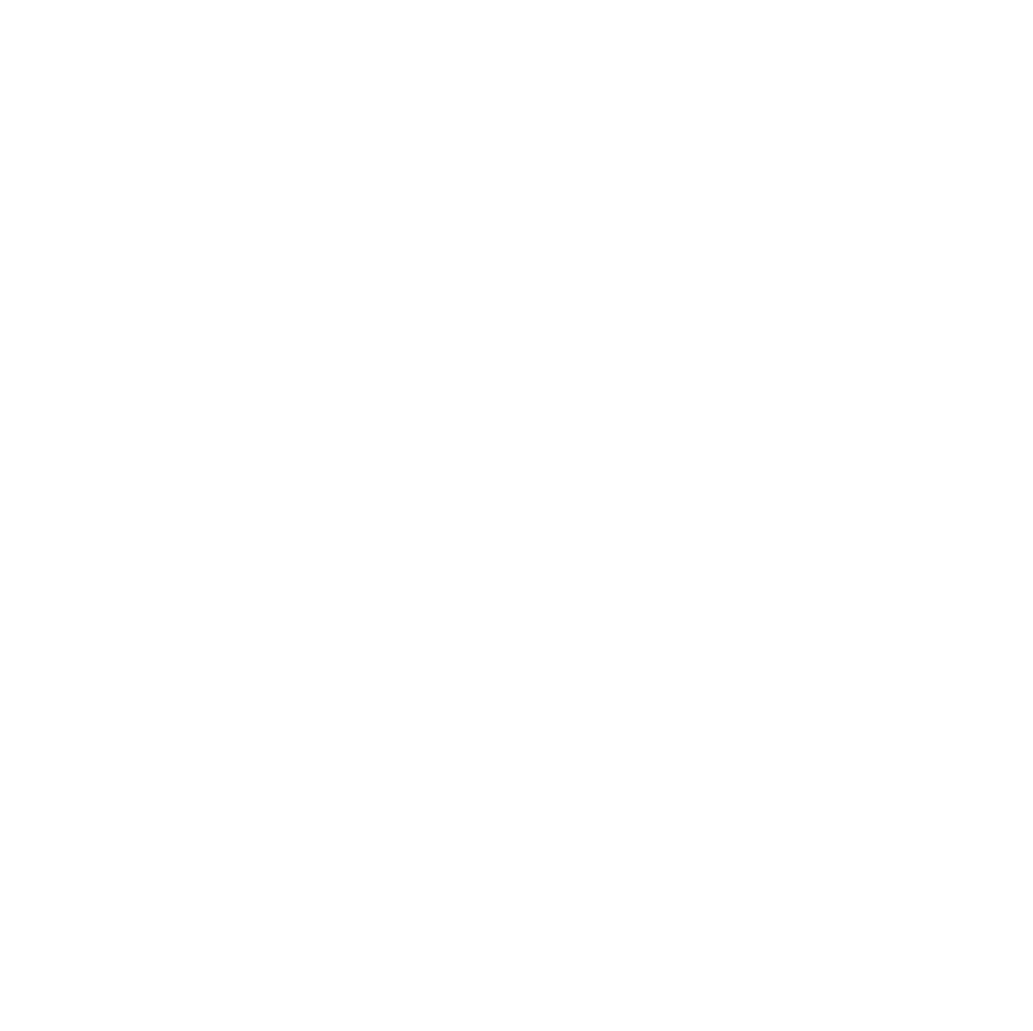 Rachael Bowman Photography - Raleigh NC Wedding and Lifestyle Photographer