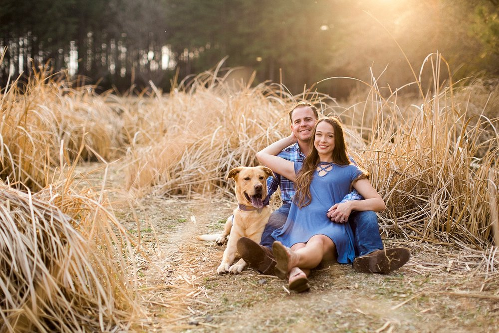 engagement session in golden grass