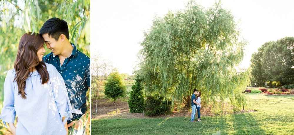 willow tree engagement session photos