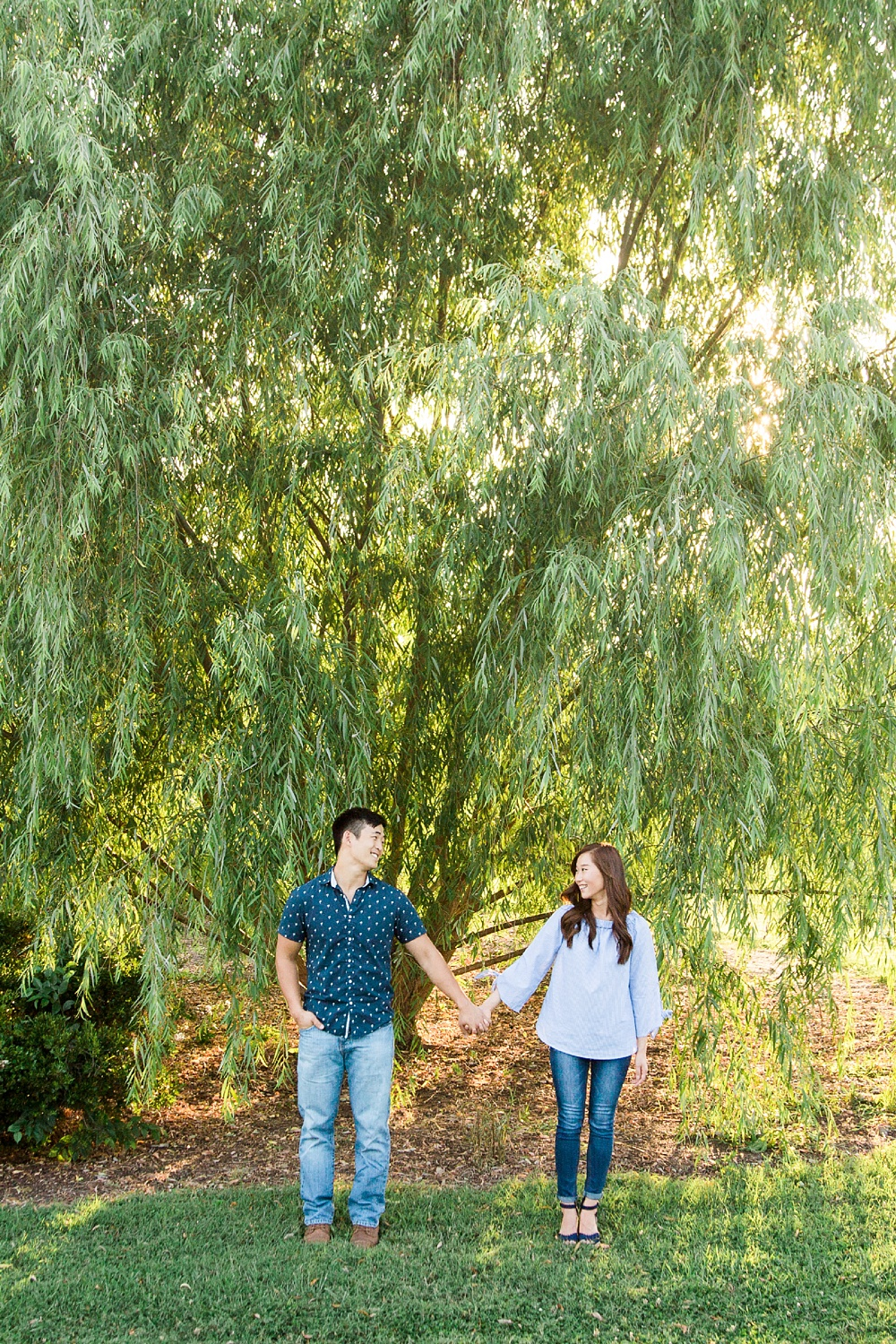 engaged couple holds hands in front of a large willow tree