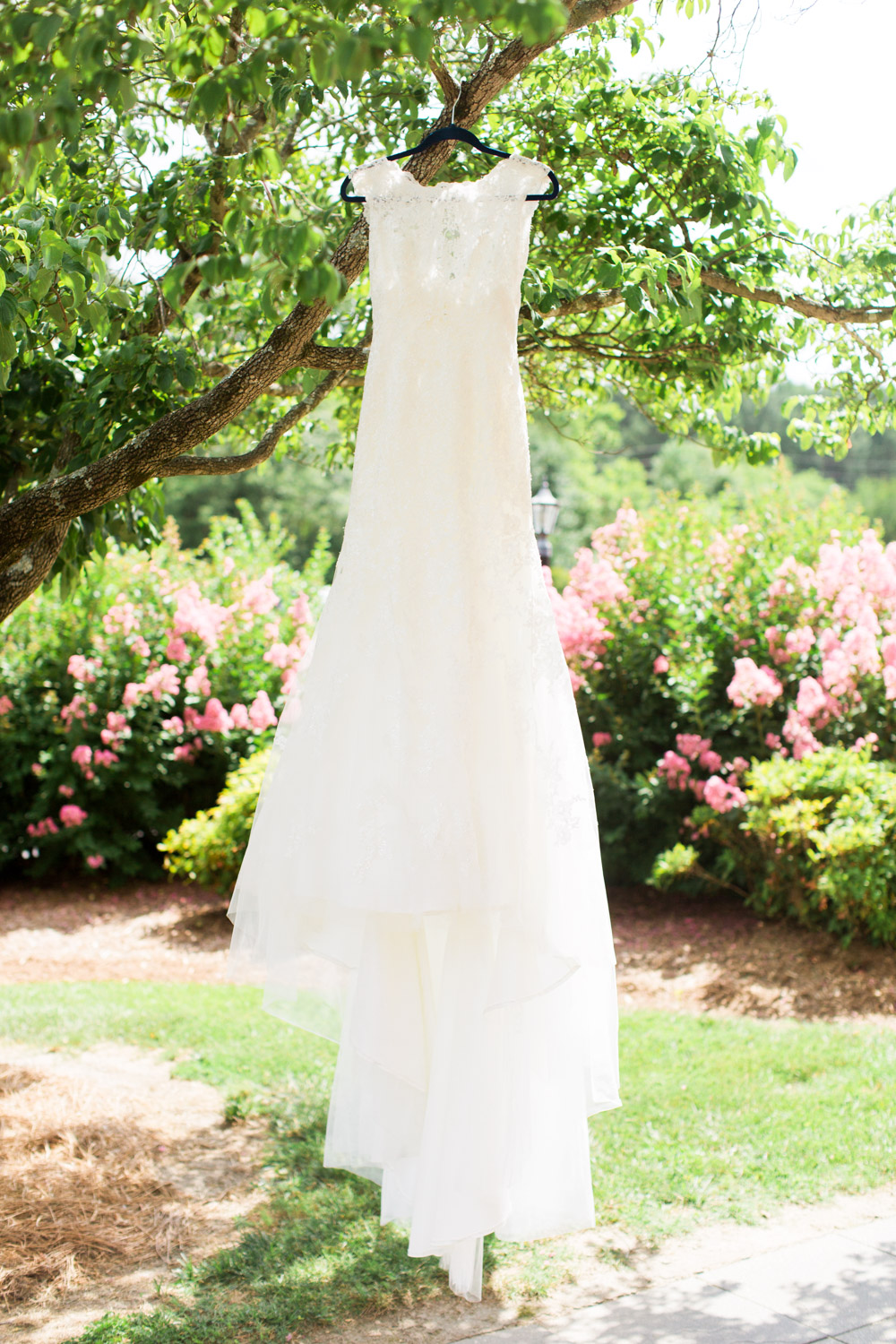 summer lace wedding dress hangs from a dogwood tree