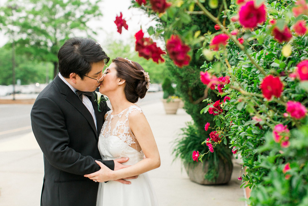 bride and groom kiss under a red rose bush