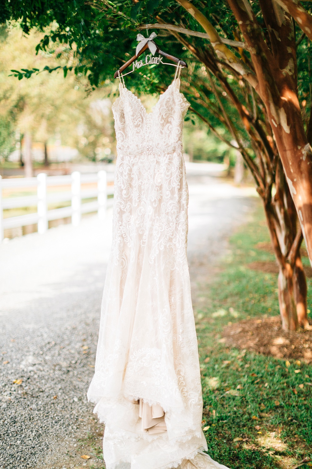 lace wedding dress hangs from a crepe myrtle lining a country road