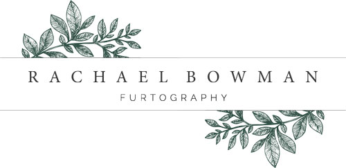 Rachel Bowman Photography Joke Logo