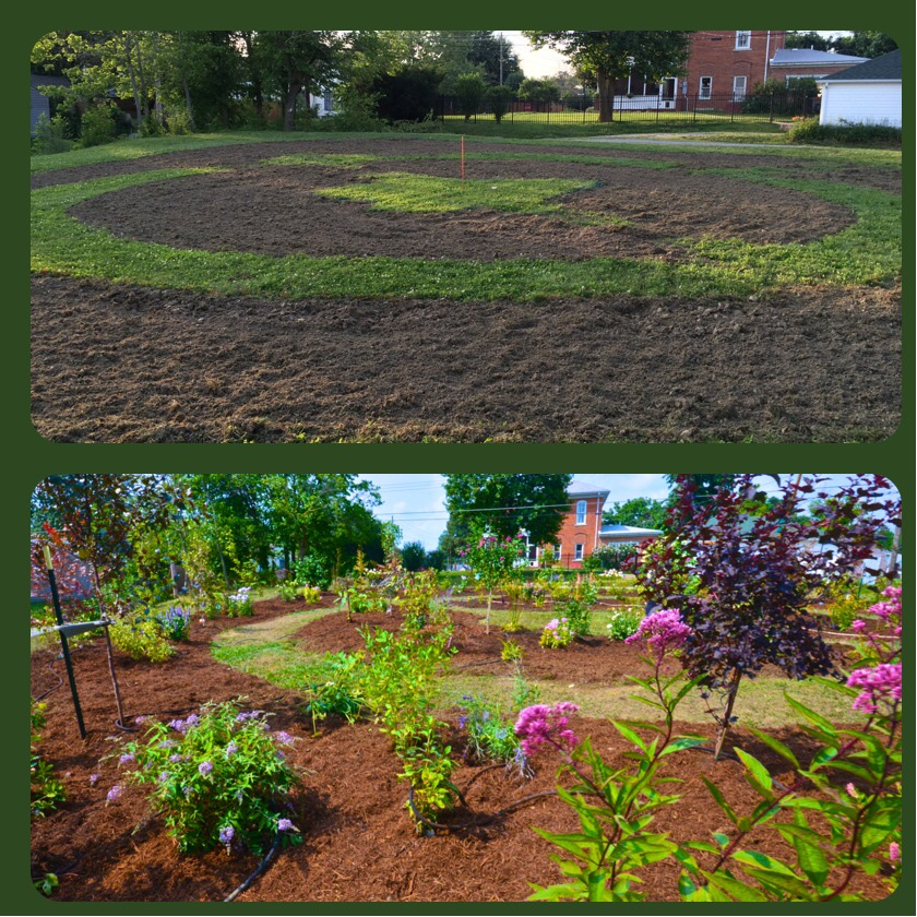 Changing Our Community One Garden at a Time: The newly tilled plot on June 27th, 2014 on the top picture and the bottom picture taken on August 2nd, 2014 showing the transformation of the property.