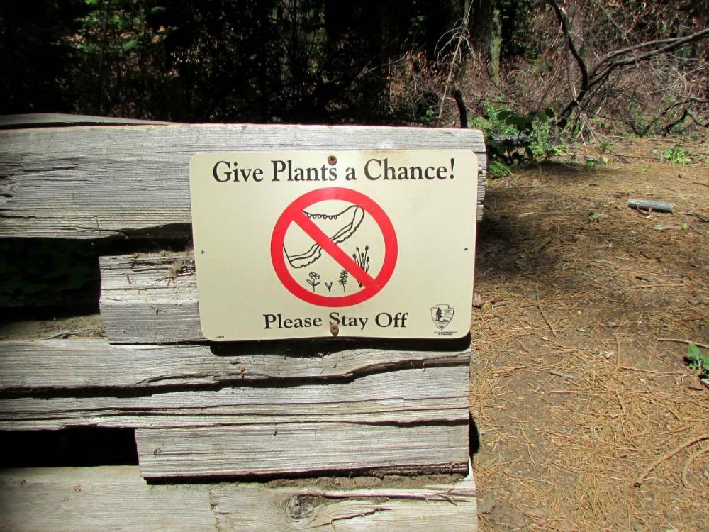 Keila does Yosemite 5