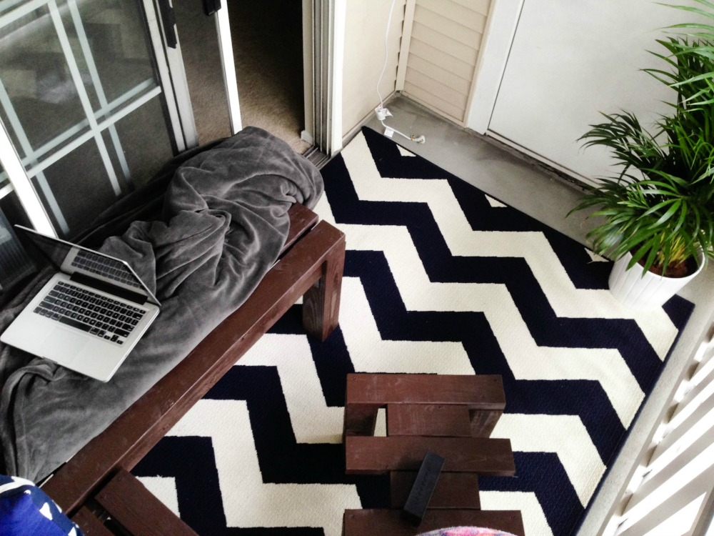 The rug/pillow coordination was an accident, but an awesome one.  This chevron rug is an all-weather outdoor rug from Target, and the plant was an Ikea gem.