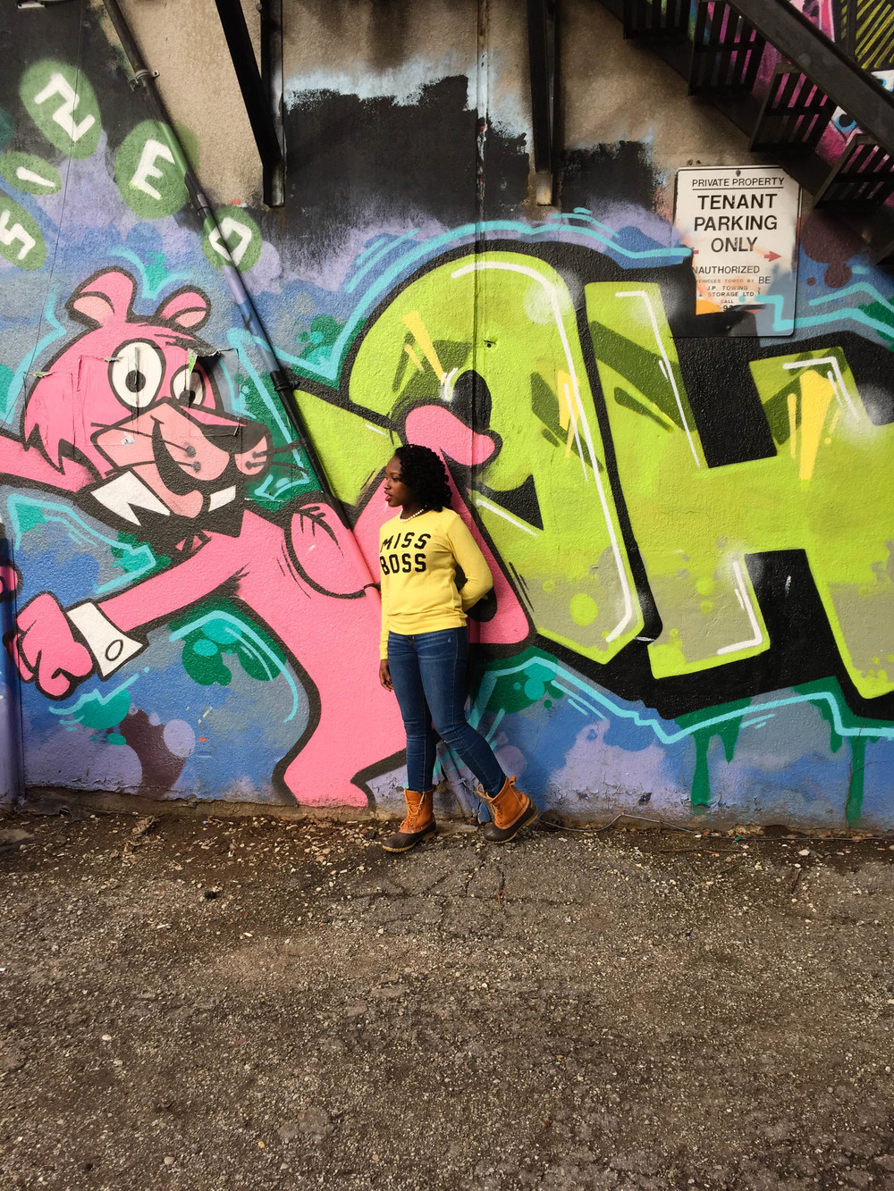 Graffiti Alley Toronto Pink Panther