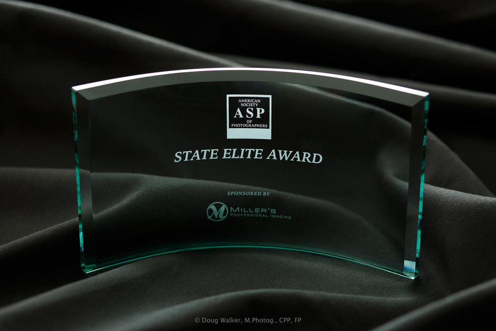 ASP State Elite Award