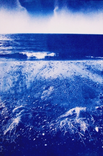 Lake Michigan Cyanotype - Joe Svec