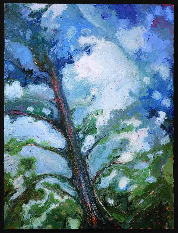 Jet's Trees - Blue